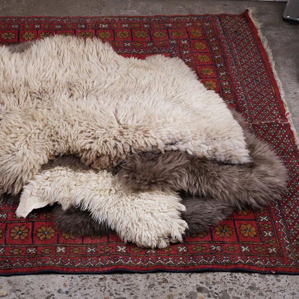 schapenvacht
